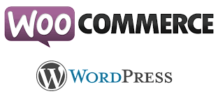 Using Woo Commerce for Shopping Websites
