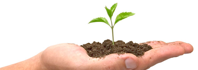 How Your Accountant Can Help Your Business Grow